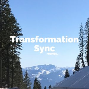 Transformation Sync